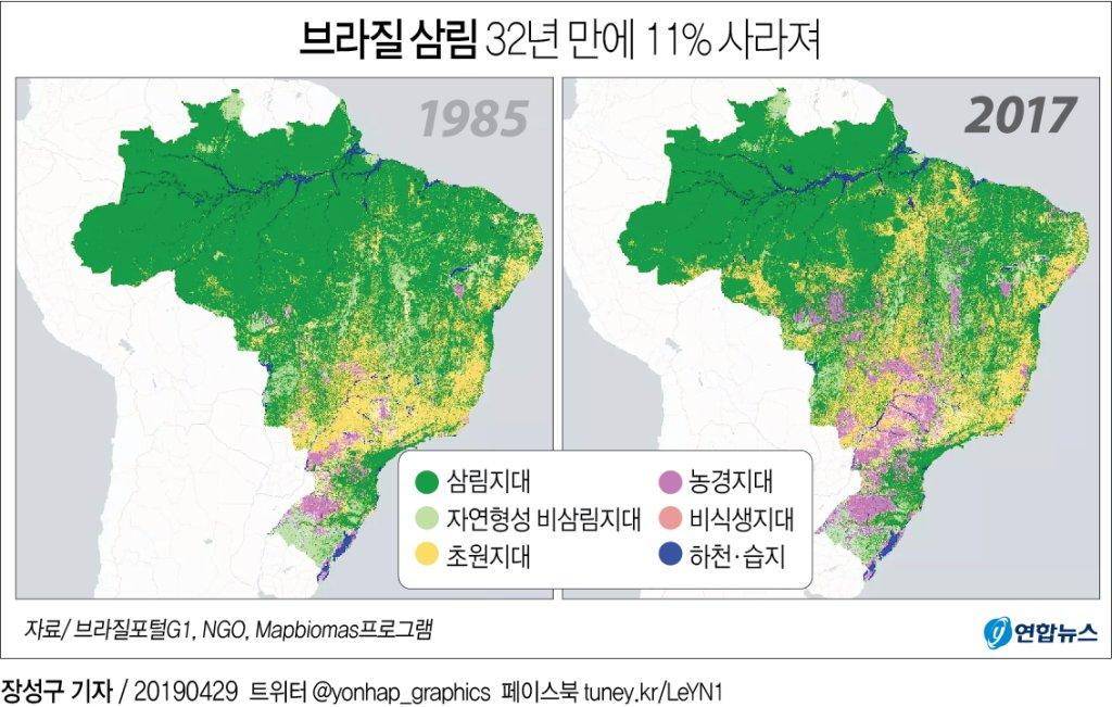 브라질, 1985∼2017년에 전체 삼림의 11% 사라져…한반도의 10배 - 1