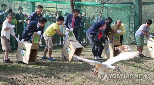 Crested ibises shown to public for 1st time in 37 years