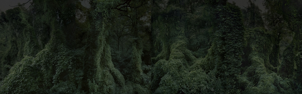 "This image of ""The Valley of Darkness"" was provided by photographer Kwon Sun-kwan and Hakgojae Gallery. (Yonhap)"