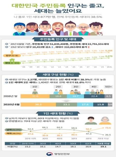 Infographics provided by the Ministry of the Interior and Safety shows an analysis of Korean household. (Yonhap)