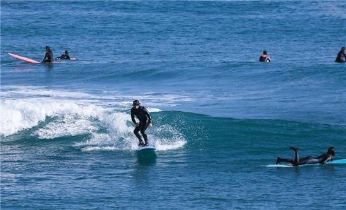 부흥 해수욕장에서 동호인들이 서핑을 즐기고 있다. [사진/성연재 기자]