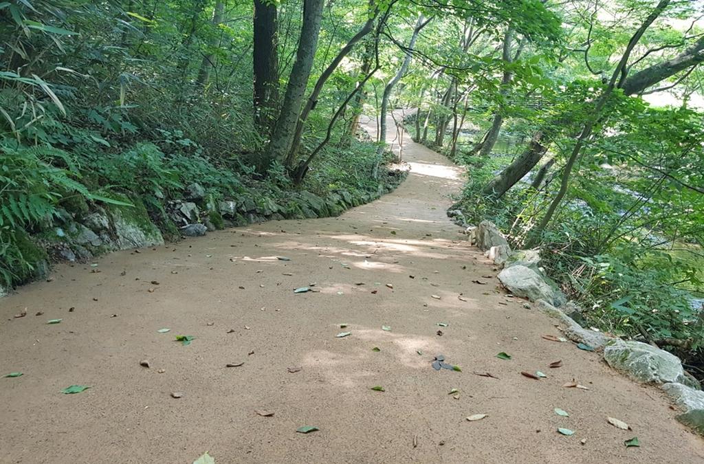 내장산국립공원 탐방로에 조성된 친환경 황톳길