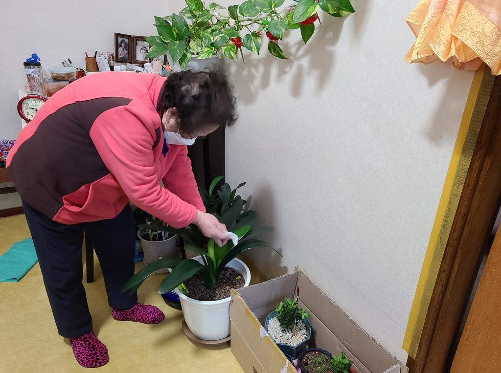 식물 손질하는 김백순 할머니