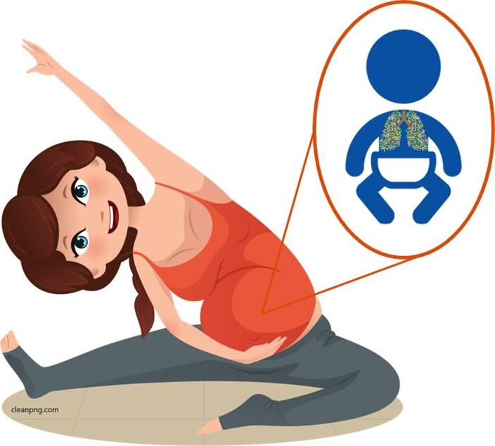 임신 중 운동