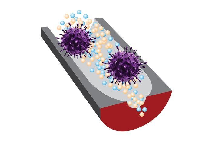 새로운 DNA 센서는 선택성 DNA 조각과 민감한 나노구멍(nanopore) 기술을 이용, 전염성이 있는 바이러스와 전염성이 없는 바이러스를 구별한다. [Ana Peinetti 제공. 재판매 및 DB 금지}