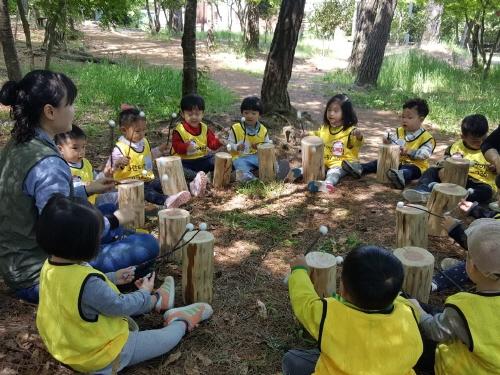 영암군, '유아숲 체험' 영암 생태숲에서 성황리 운영 - 1