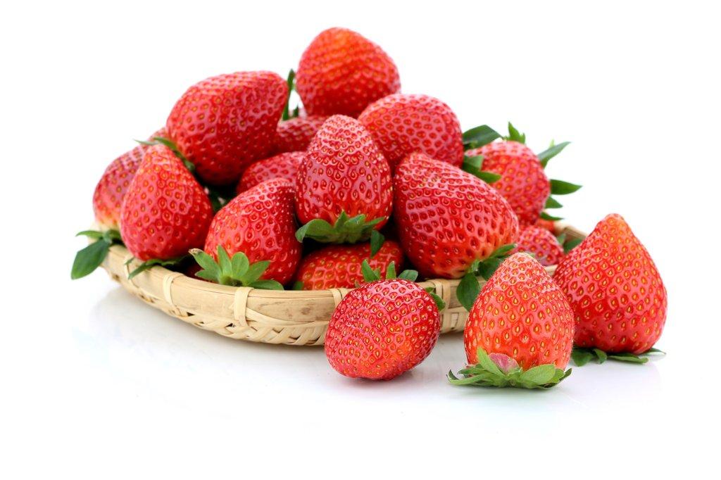크고 단단한 딸기 신품종 '아리향' 첫선