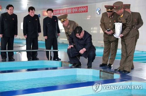 NK leader inspects fish farm